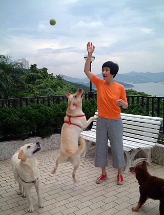 Liza, Lucky, Momo and Fok Fok Route_photo_1024